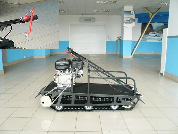 P1060590-1.jpg